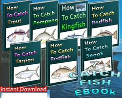 Catch Fish Ebook