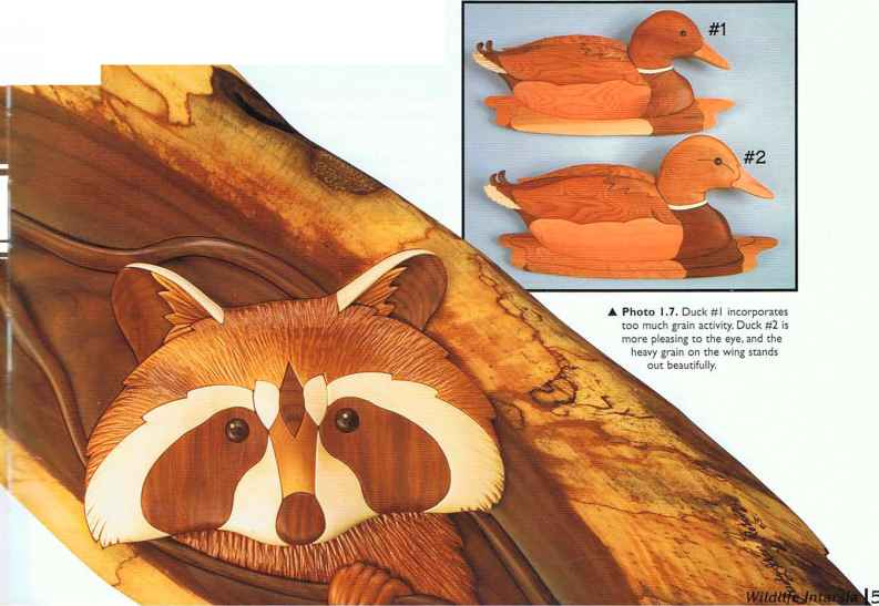 Wood Choice for Pattern Layout - Wildlife Intarsia